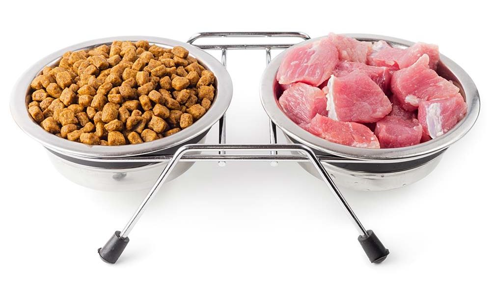 Croquettes et viande fraiche