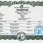 Titre de champion WCF Lukeria